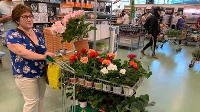 Bau- und Gartencenter dürfen seit Montag wieder Kunden empfangen: Die Genferin Emilia Henriques aus Thônex kauft für sich und eine 80-jährige Bekannte ein. (Benjamin Weinmann)