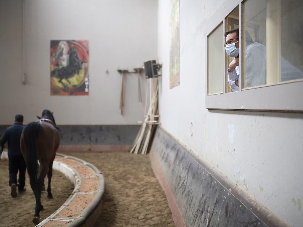 Fredy Knie gibt mit Schutzmaske Anweisungen beim Training der Pferde beim Zirkus Knie im «Wartequartier» in Rapperswil SG.