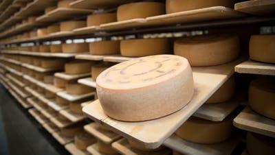 In Käselagern im Toggenburg reifen rund 200 verschiedene Käsesorten. (Symbolbild: Ralph Ribi)