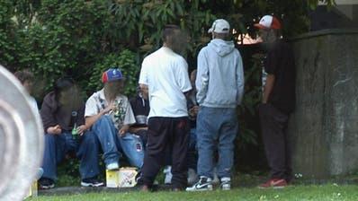 Jugendliche treffen sich zum Feierabendbier in einem Park. Ob solch liebgewordener Gewohnheiten fällt vielen in dieser Altersgruppe derzeit wohl auch das Einhalten der Anti-Corona-Massnahmen schwer. (Symbolbild: Walter Schwager (1.6.2005))
