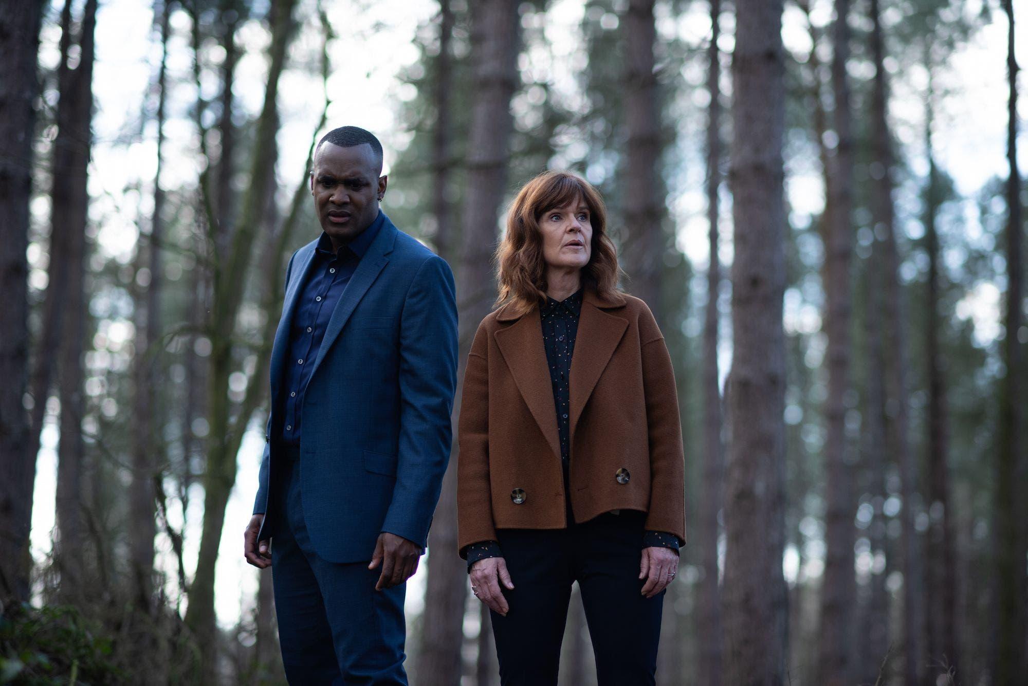 NEU: The Stranger (2020–) Ein totes Alpaka in der Stadt, ein schwer verletzter Junge im Wald und eine Fremde, die Geheimnisse ausplaudert. Die in England spielende Miniserie beginnt vielversprechend.