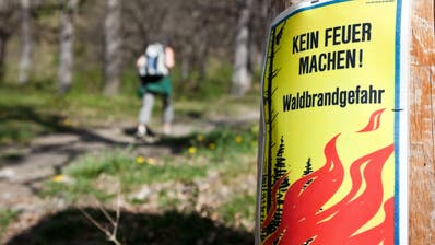 ARCHIV - ZUM ERLASS DER FEUERVERBOTE WEGEN DER ANHALTENDEN HITZE UND TROCKENHEIT IN MEHREREN KANTONEN STELLEN WIR IHNEN FOLGENDES BILDMATERIAL ZUR VERFUEGUNG - Ein Plakat im Eichwald von Tamins im Churer Rheintal warnt am Sonntag, 10. April 2011, vor der grossen Waldbrandgefahr. Aufgrund der anhaltend trockenen Witterung seit Anfang Jahr verschaerft sich die Waldbrandgefahr. Im Kanton Graubuenden gilt ein absolutes Feuerverbot im Wald und in der Naehe eines Waldes. (KEYSTONE/Arno Balzarini) (Arno Balzarini / KEYSTONE)