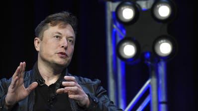Elon Musk. (Susan Walsh / AP)