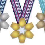 Silber, Gold, Bronze – Die Medaillen für die Besten der Winteruniversiade 2021. (Bild: PD)