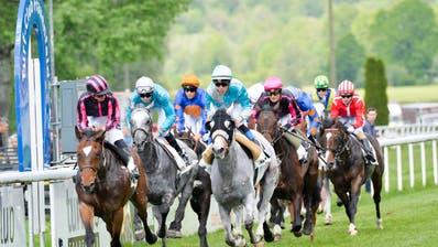 Der Pferderennsport ist derzeit in der Krise. (Bild: Donato Caspari (Frauenfeld, 26. Mai 2019))