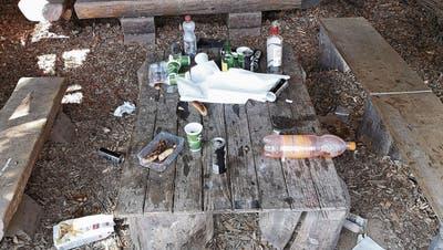 Mehr Littering während Lockdown – St.Galler Gemeinden kämpfen gegen Abfallsünder:«An Scherben und Büchsen können sich Kinder, Hunde und Wildtiere verletzen»