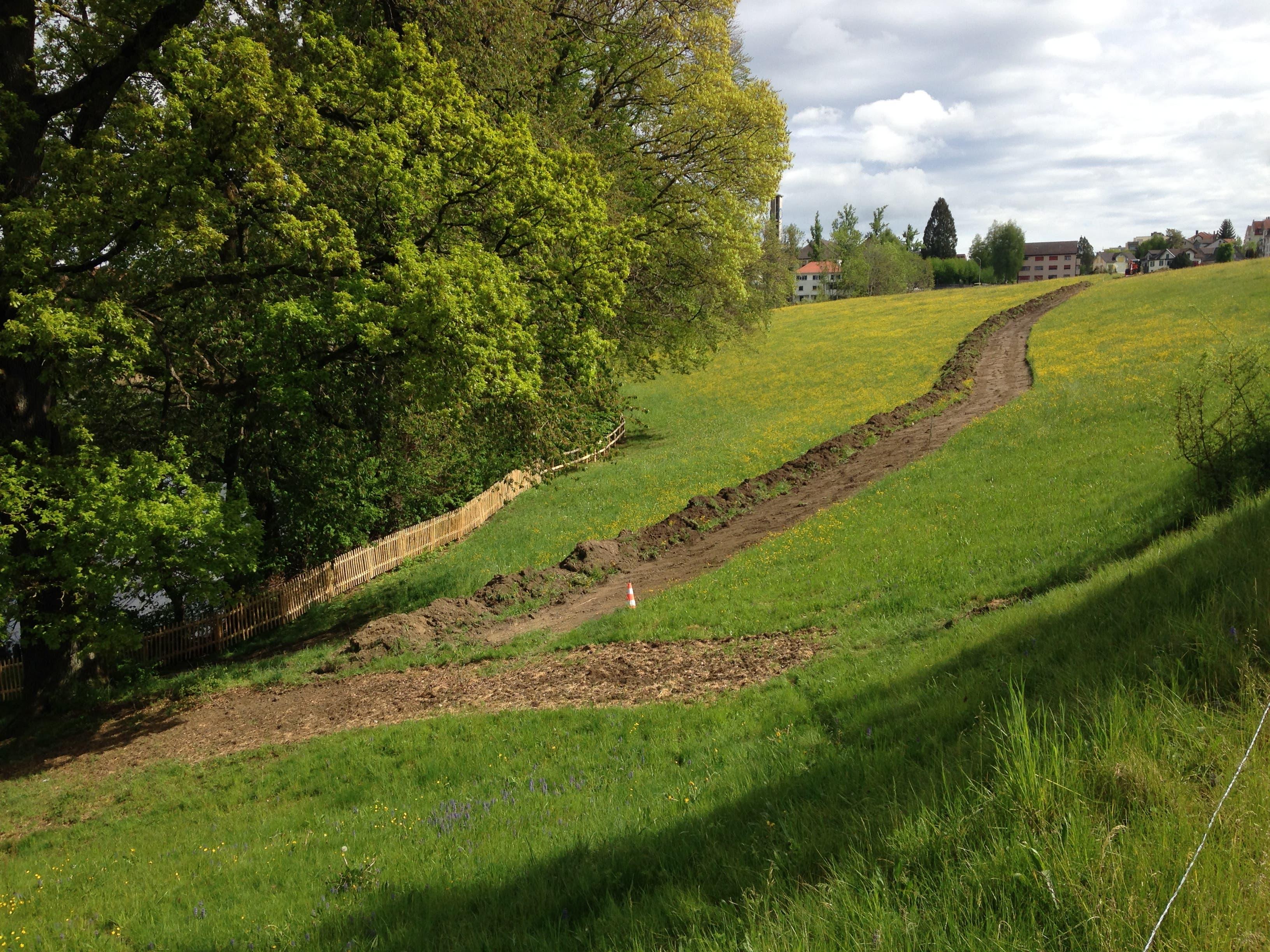 Bereits ist ersichtlich, wie der Weg parallel zur Fürstenlandstrasse zum Damm des unteren Burgweiers führen wird.