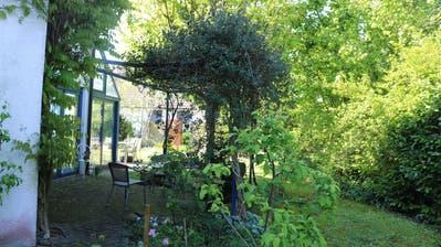 Der Blick in den eigenen Garten kann zum interessanten Erlebnis werden. (Markus Bösch)