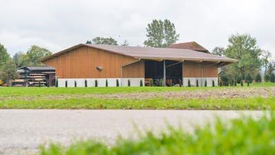 In Zezikon steht in der Landwirtschaftszone eine grosse Halle. Peter Nauer hat sie ohne Bewilligung erstellt. Eigentlich sollte sie abgerissen werden, doch ein neues Baugesuch verhindert das. (Donato Caspari)