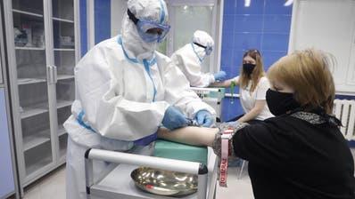 Blut aus der Vene für den Antikörpertest. In Russland unter sterilen Bedingungen. (Maxim Shipenkov / EPA)