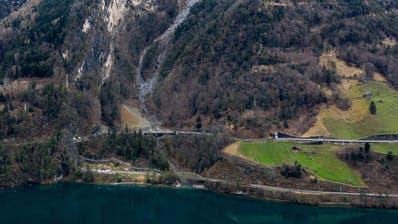 Jetzt nimmt der Geschäftsführer der Alpen-Initiative Stellung zur Axen-Beschwerde: «Kantone sollen von Maximalforderung abrücken»