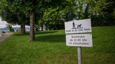 In der Anlage Tellenörtli in Oberwil sind nebst Badegästen auch Hunde erlaubt – sofern sie an der Leine sind. (Bild: Stefan Kaiser (Zug, 16. Juni 2020))