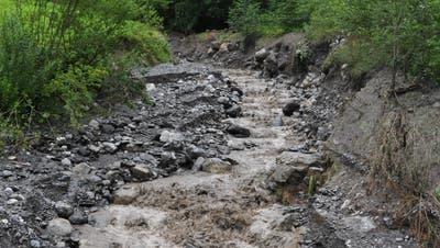 «So in Panik geraten sind sie noch nie»: Kuhherde stürzt in Obwalden in ein Tobel – achtträchtige Tiere sterben