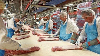 Eine verseuchte Branche:Corona-Ausbruch bei Tönnies stösst eine Debatte um Zustände in der Fleischindustrie neu an