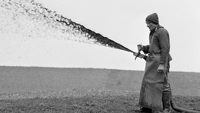 Landwirte können mit Deckel Ammoniak-Ausstoss vermindern