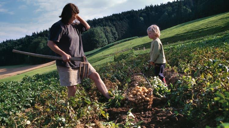 Kleine, vielfältige Felder und viele Menschen, die mithelfen: So stellt sich die Kleinbauernvereinigung die Zukunft der Landwirtschaft vor. (Symbolbild) (Keystone)