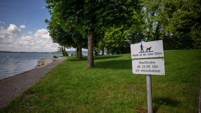 In der Badeanlage Tellenörtli in Oberwil sind Hunde erlaubt. (Bild: Stefan Kaiser, (Oberwil Zug, 16. Juni 2020))