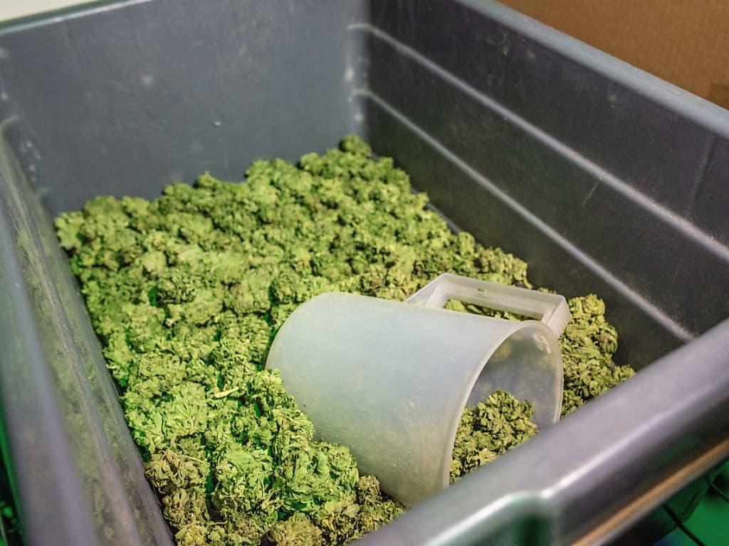 Hanfblüten mit einem tiefen THC-Gehalt unterstehen nicht der Tabaksteuer.
