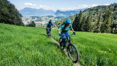 Zwei Mountainbiker unterwegs oberhalb von Kriens. (Bild:Roger Grütter/Privatarchiv)