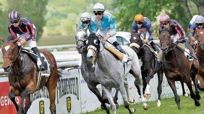 Die Pferderennen auf der Grossen Allmend in Frauenfeld sind zurück aus derCoronapause