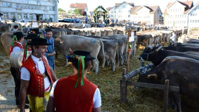 In vielen Gemeinden gehören die Viehschauen zu den publikumsstärksten Anlässen im Jahr. (Bild: PD)
