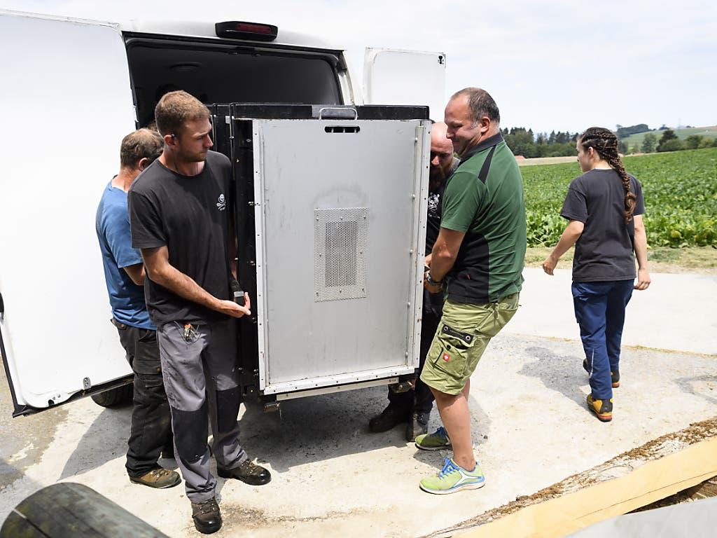 Die Transportkiste mit dem 105 Kilogramm schweren Junglöwen Makuti wird ausgeladen.