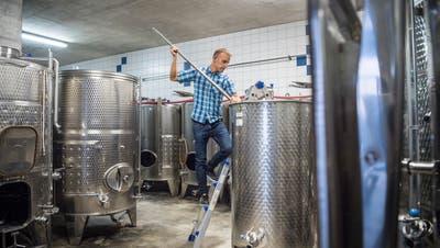 Der Weinfelder Winzer Michael Burkhart stösseltdie Maische in einem der Stahltanks im Weinkeller. (Bild: Andrea Stalder (Weinfelden, Oktober 2018))