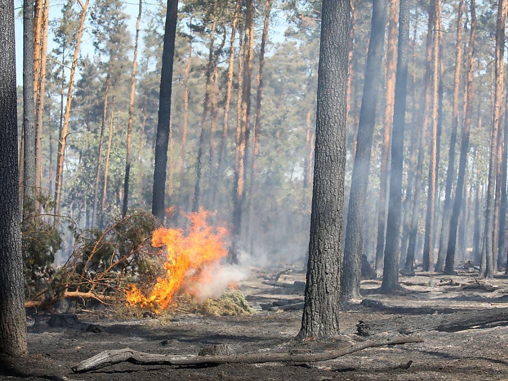 Zahlreiche Kantone mahnen zum sorgfältigen Umgang mit Feuer wegen der zunehmenden Waldbrandgefahr.