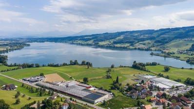 Der Baldeggersee, fotografiert mit der Drohne von Ermensee aus. (Bild: Patrick Hürlimann (29. Juli 2020))