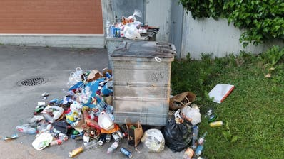 Der Abfall türmt sich. (Bild: Stadt Luzern / Facebook)