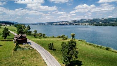Beim Baldeggersee soll ein Rundweg entstehen. Auf dem Bild zu sehen ist der Abschnitt im Bereich Tempikon in Blickrichtung Retschwil. (Bild: Pius Amrein, 11. Juli 2018)