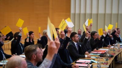 Auch die 30 Mitglieder des Stadtparlaments stehen am 27. September zur Wiederwahl. (Urs Bucher (4. April 2019))