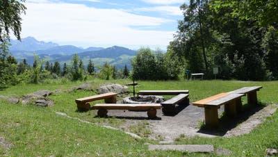 Die grosszügige Feuerstelle beim Waldpark in Heiden. (Bild: Alessia Pagani)