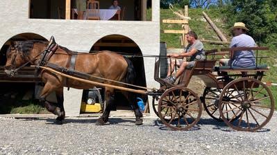 Alte Fuhrwerke, aber auch Berittene werden wiederum bei der Freilichtbühne Rüthi zum Einsatz kommen. (Alexandra Gächter)