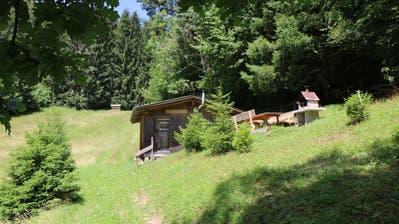 Blick auf die Alphütte Ziegelmoos. Von hier führt die Wanderung links an der Hütte vorbei weiter hoch bis zum Waldrand und dann links in den Wald. (Bild: Hans Suter)