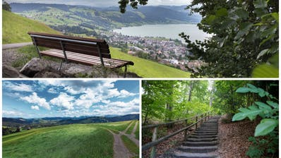 Die schönsten Spaziergänge im Kanton Zug