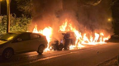 Die brennenden Autos an der Villenstrasse in der Stadt Luzern. (Bild: Luzerner Polizei)