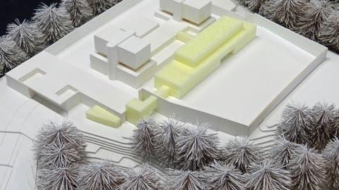 Modell mit Bestandesbauten (weiss) und Neubauten (gelb). (Bild: PD)