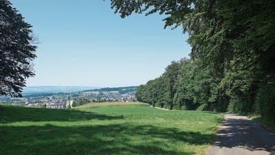 Schönste Spaziergänge im Kanton Zug: Wenn die grandiose Aussicht lockt