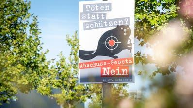 An der Realität vorbei gezielt? Gegen das neue Jagdgesetz wird mit einem Biber im Fadenkreuz mobilisiert- unter anderem in Kreuzlingen. (Andrea Stalder)