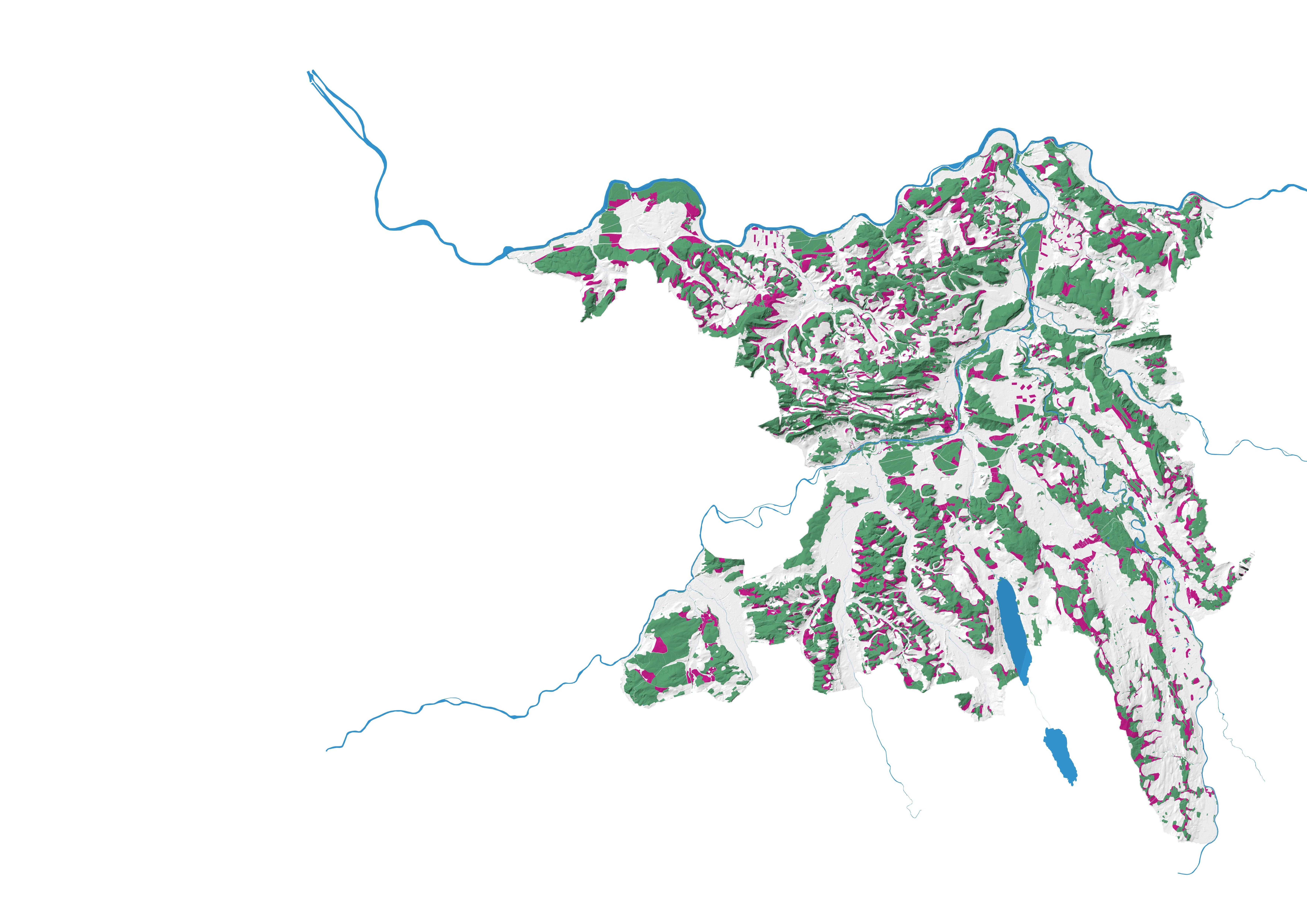 Mit dem zusätzlichen Wald soll sich die Fläche auf total 61'000 Hektar belaufen, was rund 45 Prozent der gesamten Kantonsfläche entspricht. Rund 21,9 Millionen Bäume soll es so im Kanton Aargau geben.