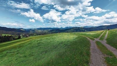 Schönste Spaziergänge im Kanton Zug: Die geliebte Heimat stets in Sichtweite