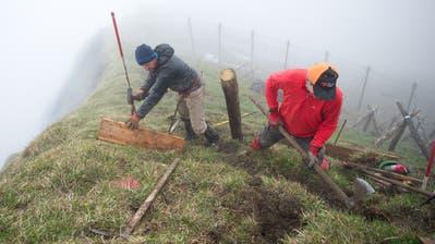 Die Berghilfe unterstützt unterschiedliche Projekte in der Region. (Bild: Corinne Glanzmann (1. Juni 2016))