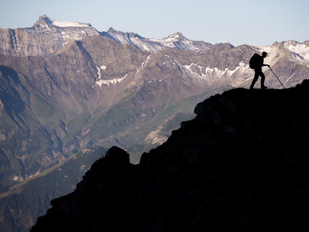 Ein Schäfer im Gegenlicht während 1300 Schafe unter dem Gipfel des Falknis (2562 Meter) bei Fläsch GR auf einem schmalen Pfad von einer Weide zur anderen wandern. Die eindrückliche Schafwanderung hat im Kanton Graubünden eine lange Tradition.