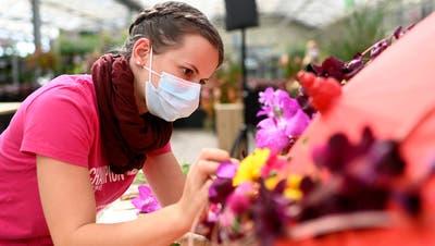 Floristin Jasmin Wüthrich aus Gossau hat eine Goldmedaille gewonnen. (Bild: PD)