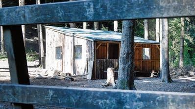 Dank des nachträglichen Baugesuchs soll sie legalisiert werden: Eine der beiden Waldhütten der Primarschulgemeinde Gachnang in einem Waldstück in Rosenhuben.