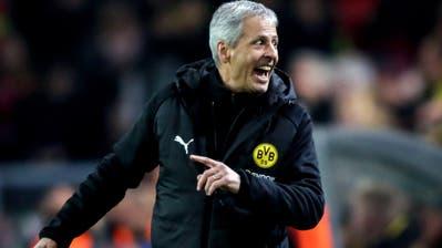 Lucien Favre: Führt er Borussia Dortmund mit seiner akribischen Arbeit zu einem Titel? (Keystone)