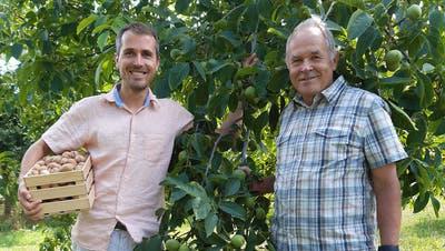 Christof Gubler und sein Vater, NusspionierHeinrichGubler, in ihrem Element. (Bild: PD)