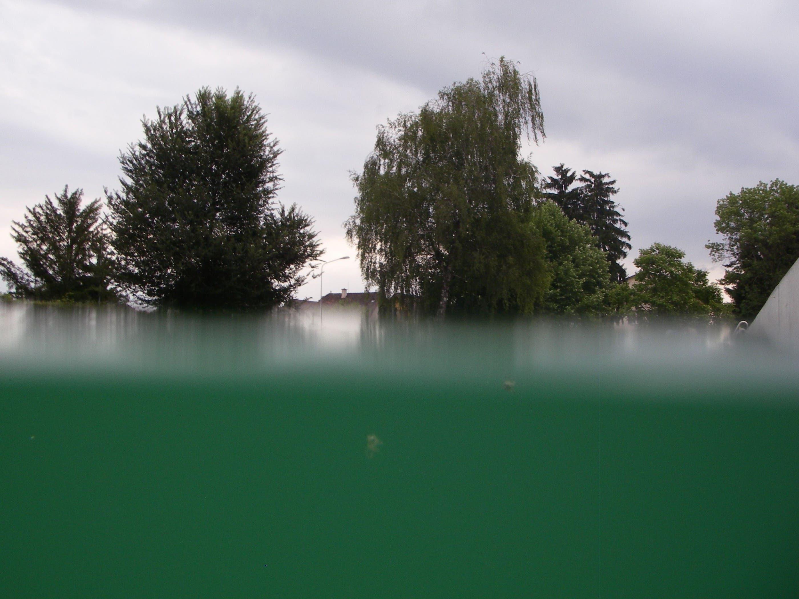 Dieses Wasser wird biologisch gereinigt