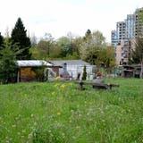 Familiengärten im Färberhüsli werden bis 2013 verschwinden